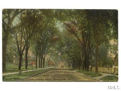 South Winooski Avenue